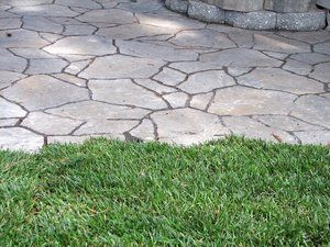 A newer paver product that resembles flagstone with out the high price. These are modular pieces that are composed of several different shapes and when fitted together properly form an acceptable looking alternative to natural flagstone. And due to their compressive strength and integral coloring hold up longer than their natural counterparts.
