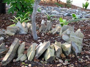 Flagstone remnants recycled into a tree band.