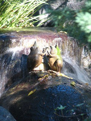 Copper frogs mounted on Faux rock at the base of a water feature.