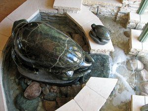 A hand carved jade colored, stone turtle is the centerpiece of this homes front door entry waterfeature. Water fills the cobbled interior of the vessel and overflows into a lower trough which then flows under a plate glass partition into the exterior pool. The cap on the raised bond beam that surrounds the turtle sculpture is capped with a hand cut and chipped limestone. The floor of the waterfeature vessel is tiled with a mesh backed pebble material that is meant to duplicate a pebble creek bed with the interior walls veneered with a quartz ledger stone. The water is treated with ozone to eliminate any chlorinated taint to the interior air quality.