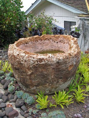 Ancient Hawaiian stone bowl carved from pumice and supplying the doves with a water source.