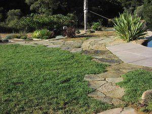 Cut flagstone provide a walkway from house to pool deck and continues down to the pool equipment. Flagstone was trimmed to minimize joints and weed growth.