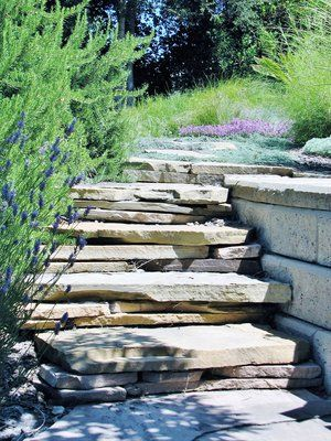 Dry stack flagstone steps constructed from the remnants of a flagstone patio, lead up to a meadow garden.