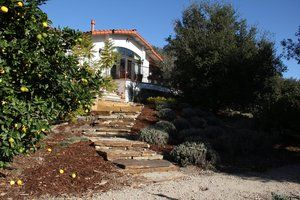 The view of the steps leading to the steppers seen in the previous photo. All the stone is drystacked and hand cut.