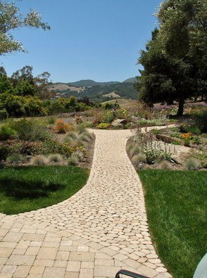 Old world cobbles, which are mortarless provide access to the perennial garden to the left and right. It also serves to catch rainwater runoff that flows down the upper slope and across the permeable surface of the pathway.