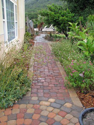 Cobbled path flanked by succulents on the house side and pink and white Salvia g. with Rosemary Tuscan blue on the other.