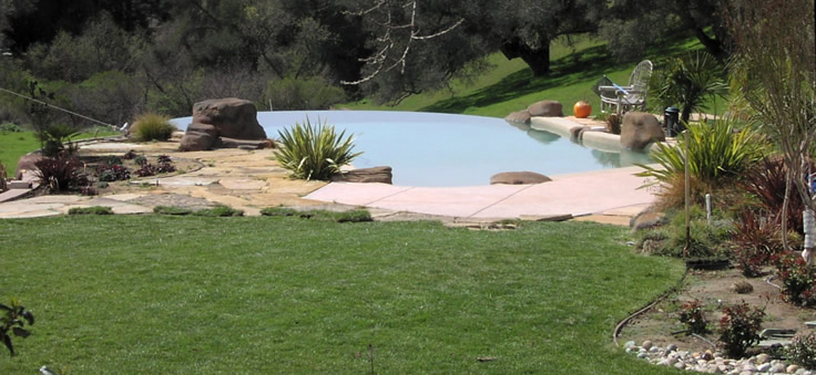 Custom freeform pool with landscape...